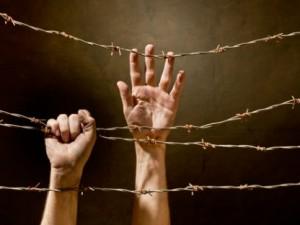 Roke ki držijo bodečo žico.