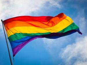 Mirovni inštitut je  pri Ustavnem sodišču RS vložil intervencijo tretje stranke v primeru pobude za presojo ustavnosti Zakona o registraciji istospolne partnerske skupnosti