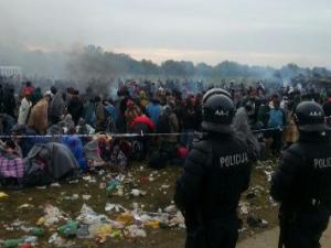 Človeško, prečloveško (ali o tem, kdo tu trpi in kako bo tudi Slovenija postavila zid, če ne bo »Evropa« uredila situacije)