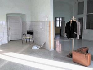 Podpora Muzeju norosti: Muzej sodi v grad, svoboda pa v ljudi