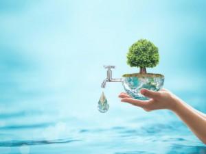 Nevladnice – Boj za vodo