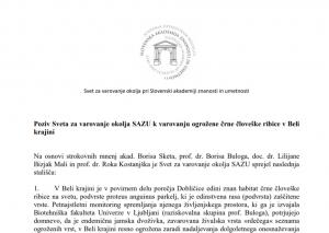 Aprila 2018 je Svet za varovanje okolja Slovenske akademije znanosti in umetnosti (SAZU) s posebno izjavo pozval ministrstvi za okolje in kmetijstvo k varovanju in zavarovanju habitata ogrožene črne človeške ribice v Beli krajini. Toda poziv je bil preslišan.